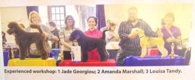 award winning dog groomer Surrey - 2nd place